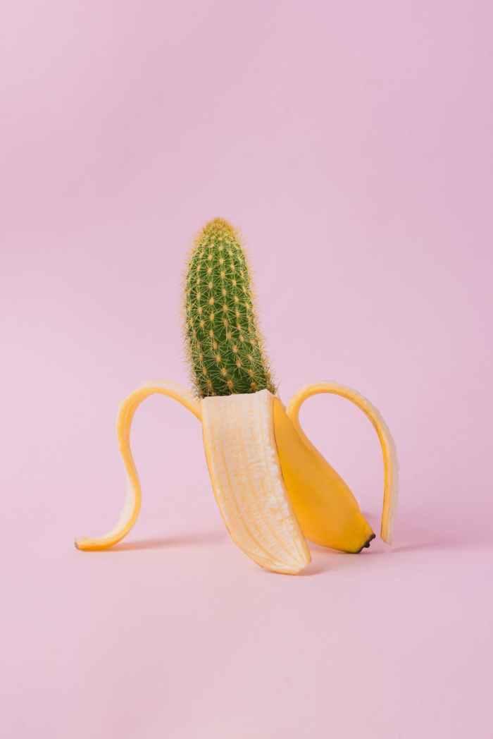 edited photo of banana and cactus